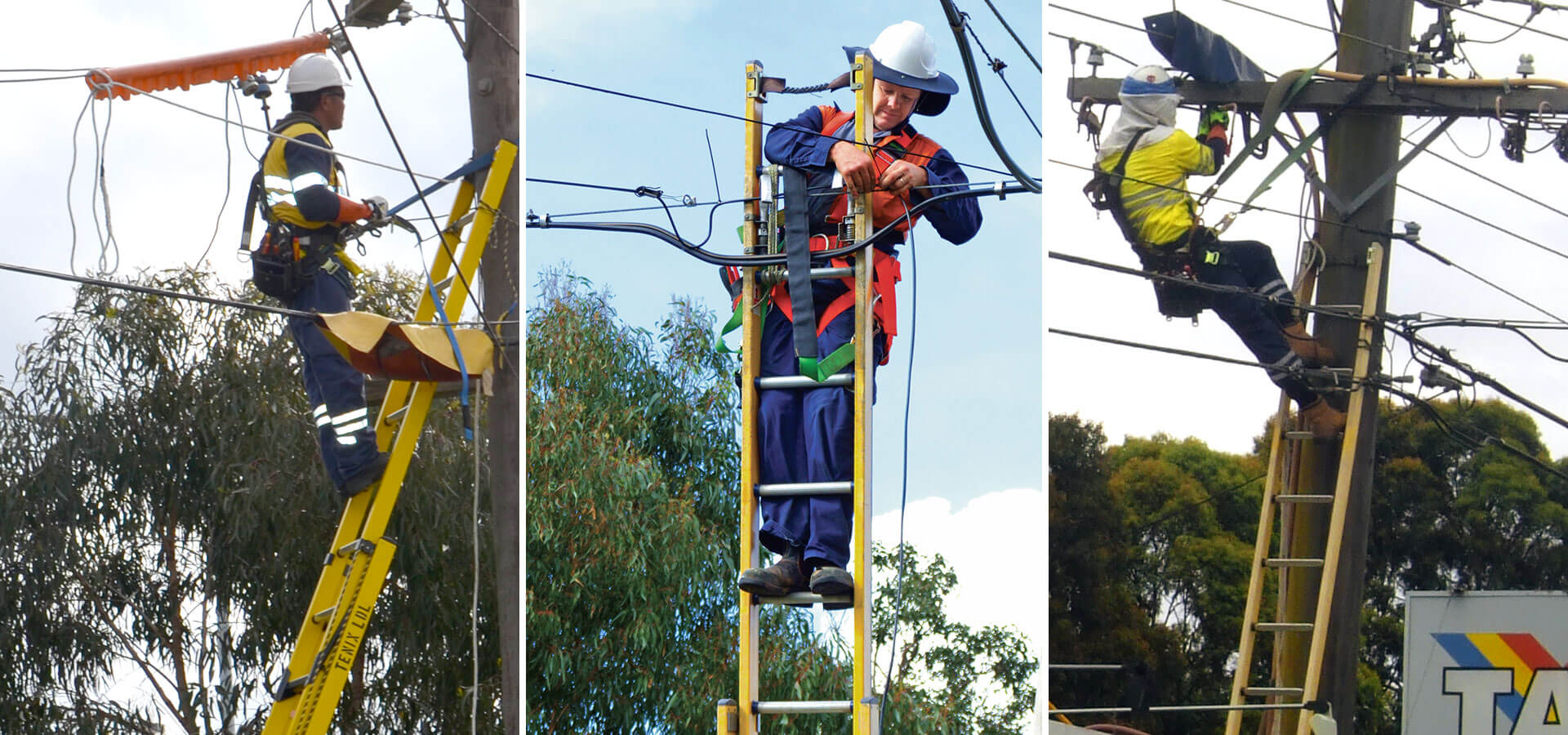 The Branach fibreglass  PowerMaster Extension Ladder being used on electrical power poles.